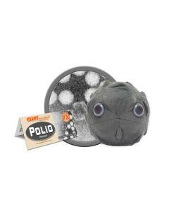 Virus Poliomielite