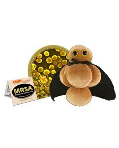 Virus MRSA